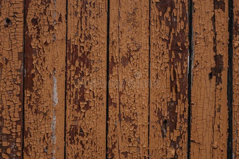 Texture en bois de Brown, fond abstrait en bois clair photos libres de droits