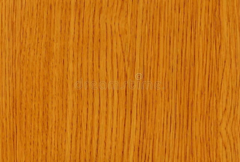Texture en bois de chêne de Beliso photo libre de droits