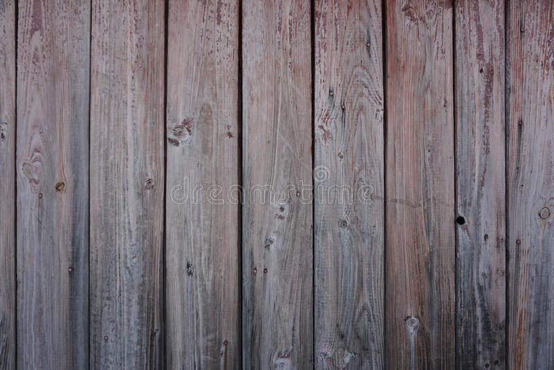 Texture en bois de cru image libre de droits