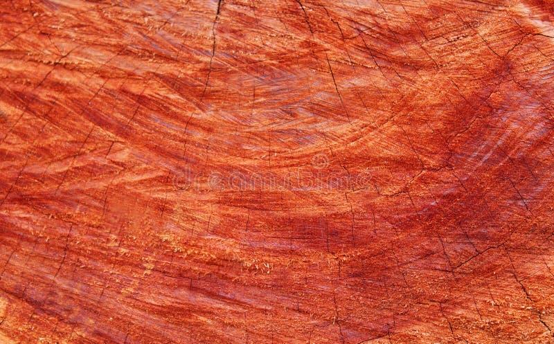 Texture en bois de Cuted image stock