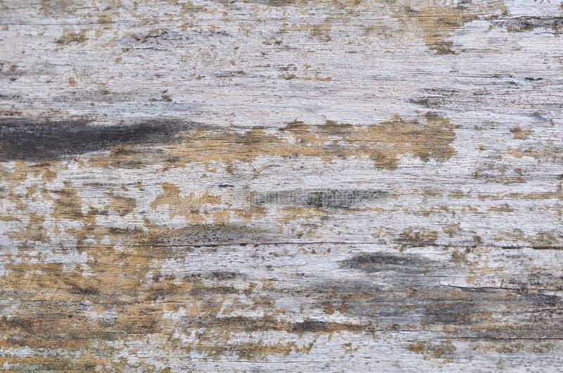 Texture en bois de fond En bois normal photographie stock
