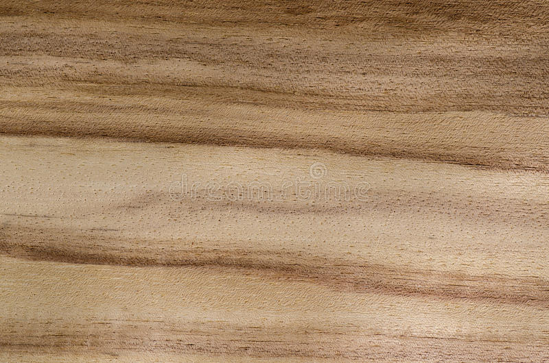 Texture en bois de grain, fond exotique de placage photo stock
