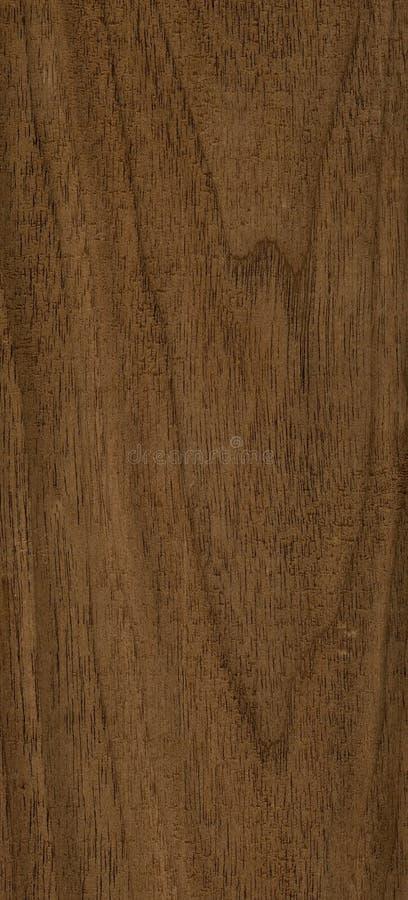 Texture en bois de noix image stock