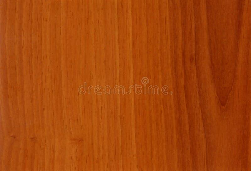 Texture en bois de noix de plan rapproché images stock