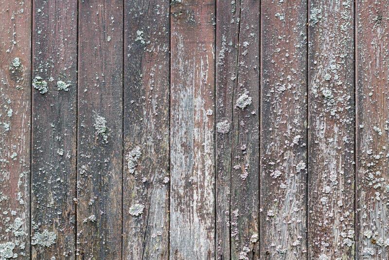 Texture en bois naturelle images stock