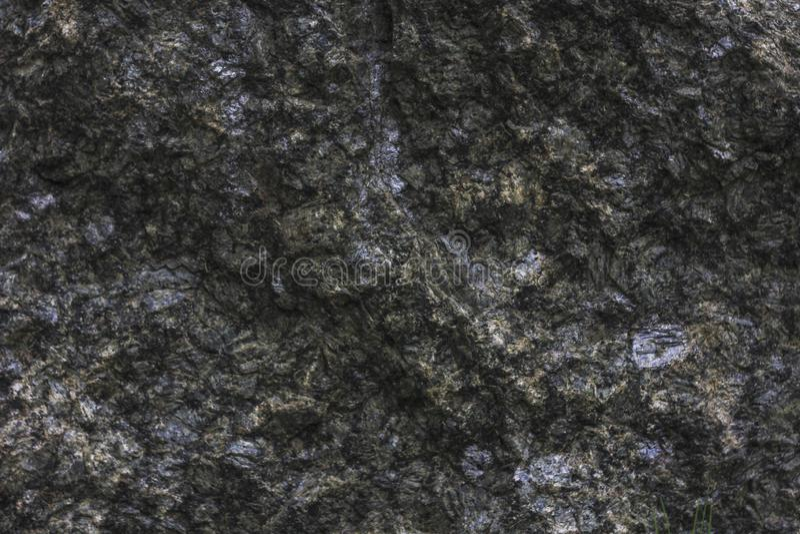 Texture en bois normale images stock