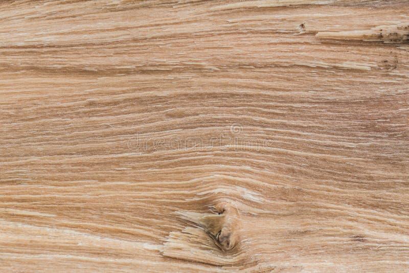 Texture en bois sciée comme fond image libre de droits