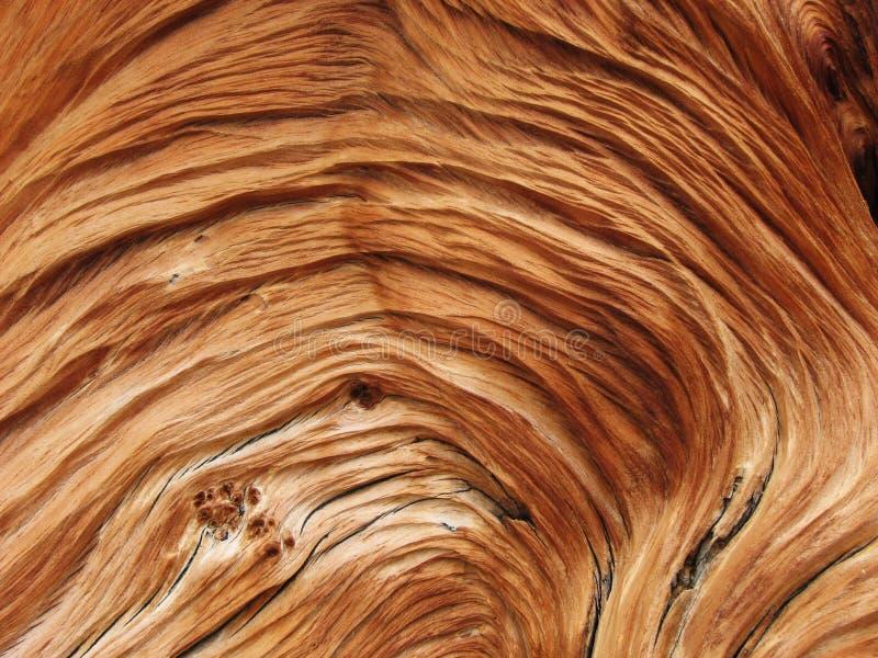 Texture en bois tordue images libres de droits