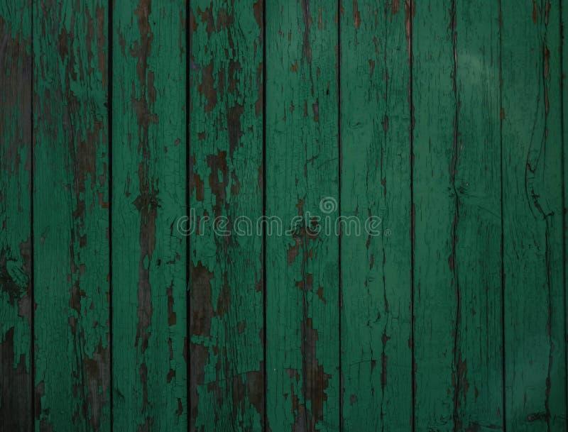 texture en bois verte de fond vert de conseils secs larges de vieux bois photographie stock