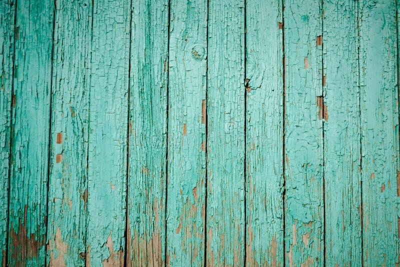 texture en bois verte de fond vert de conseils secs larges de vieux bois image stock