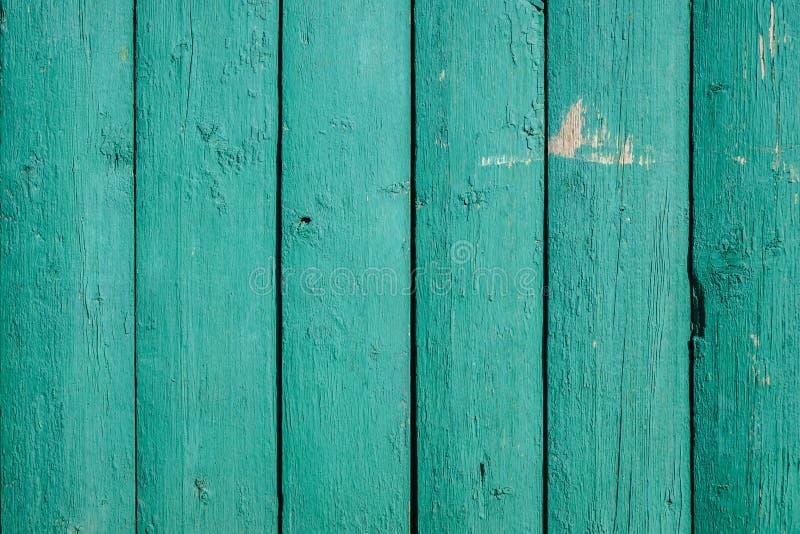 texture en bois verte de fond vert de conseils secs larges de vieux bois photo libre de droits