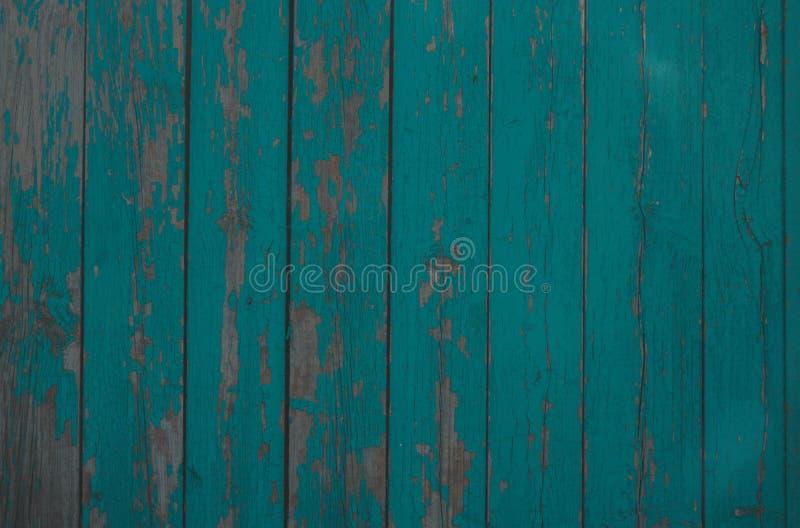 texture en bois verte de fond vert de conseils secs larges de vieux bois photographie stock libre de droits