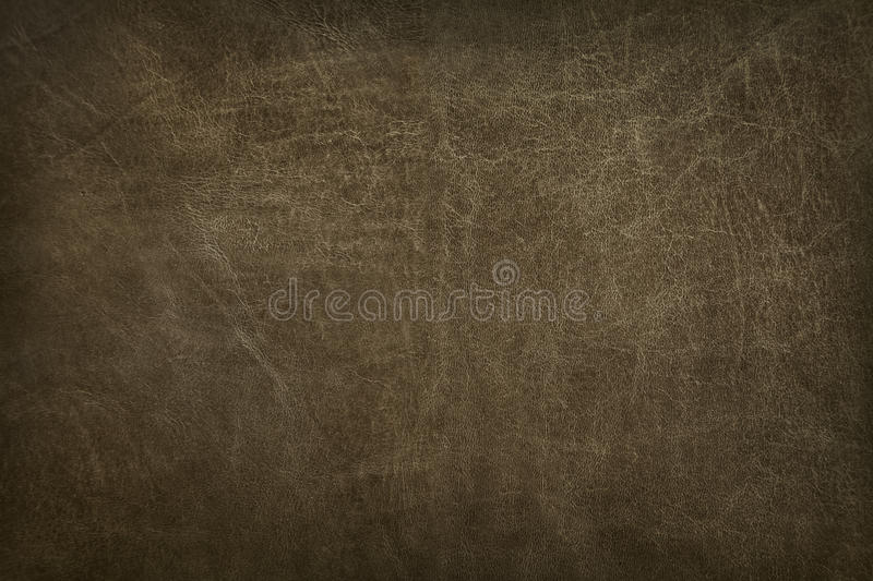 Texture en cuir photo stock