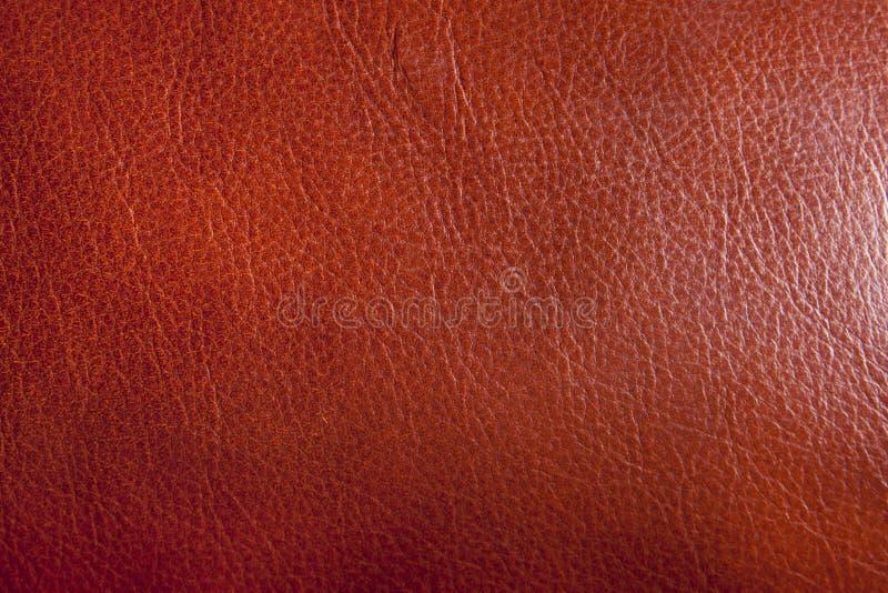 Texture en cuir de Brown photographie stock