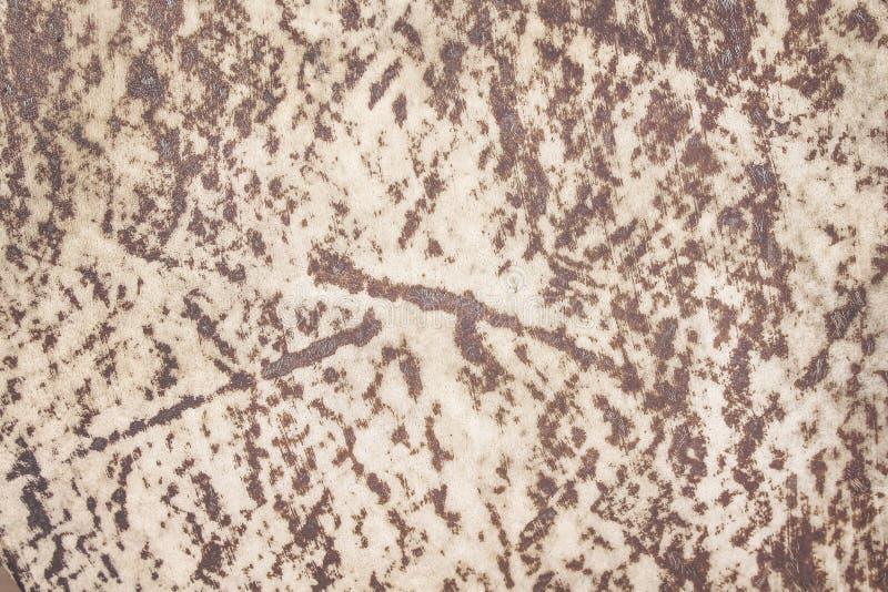 Texture en cuir de nature de vieux tambour brun avec des modèles de fourrure pour le fond photographie stock