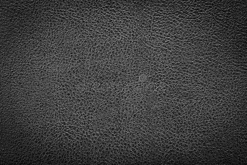 Texture en cuir, fond en cuir photo libre de droits