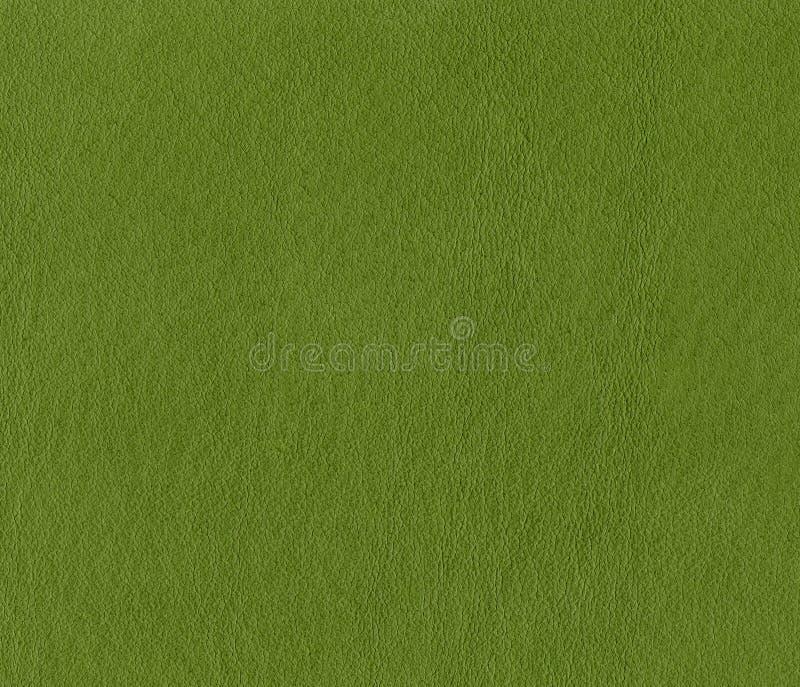 Texture en cuir verte douce image libre de droits