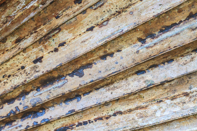 Texture en feuille de palmier sèche image libre de droits