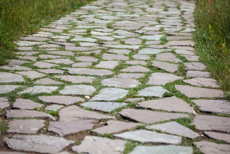 Texture en pierre de trottoir Fond abstrait du vieux pavé rond p photos stock