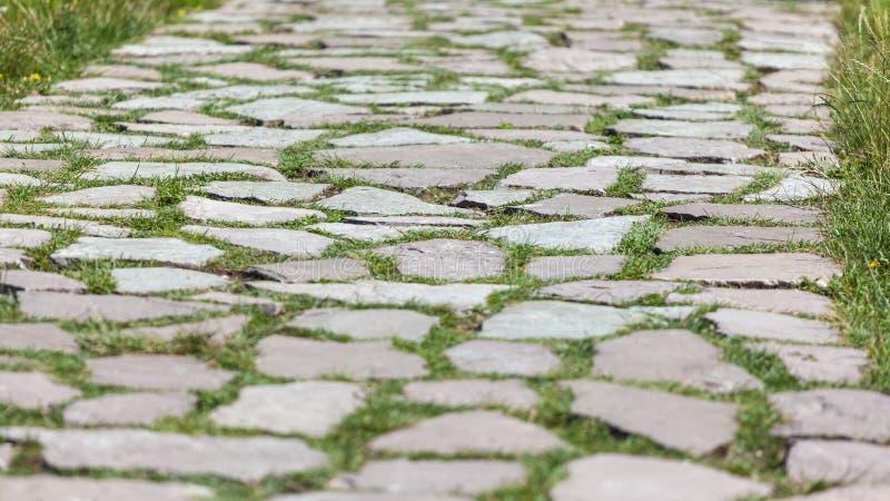 Texture en pierre de trottoir Fond abstrait du vieux pavé rond p photos libres de droits
