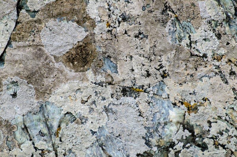 Texture en pierre grunge image stock