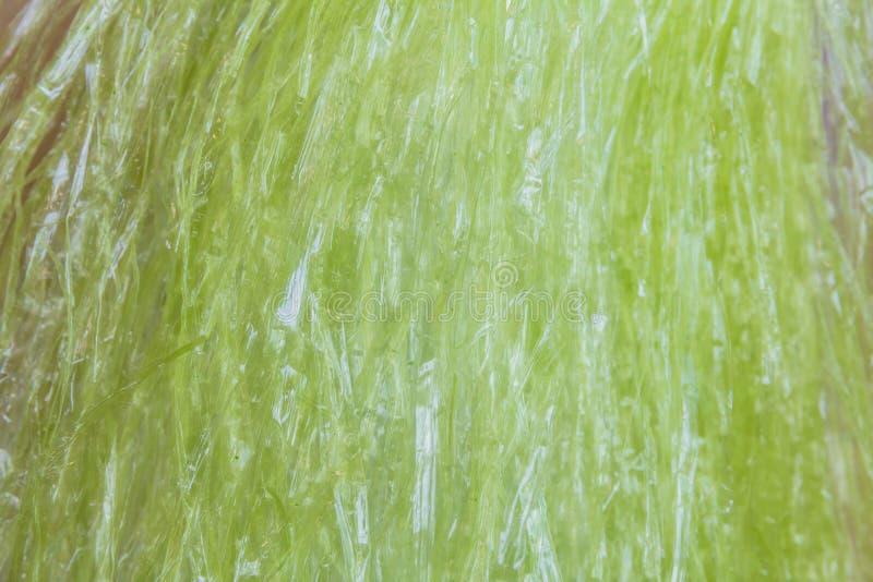Texture en plastique de corde images libres de droits
