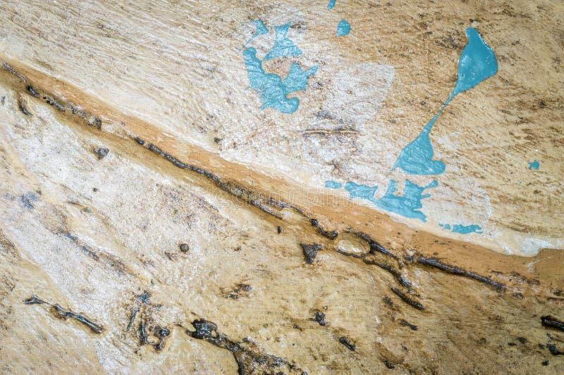 Texture extérieure en bois de vieux noir vert de Brown photo stock
