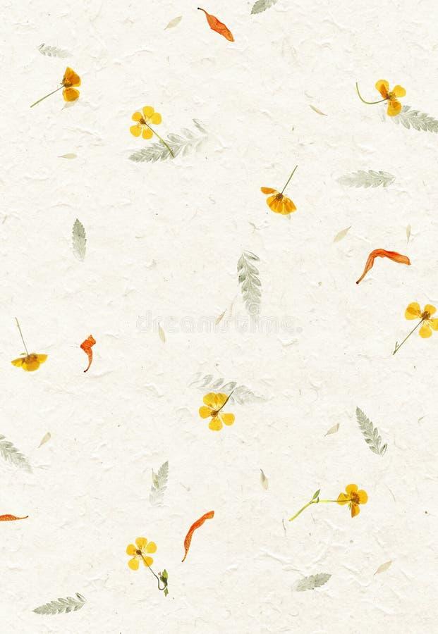 Texture faite main de papier de pétale de fleur images libres de droits