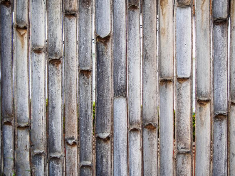 Texture of fence made from bamboo stock photos