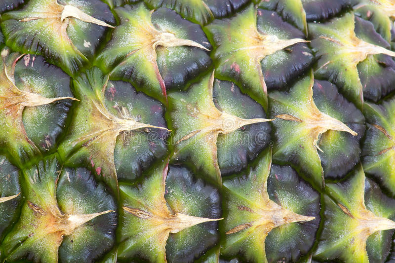 Texture of fresh pineapple royalty free stock photography