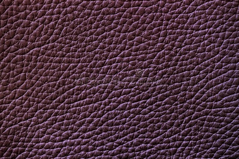 Texture of genuine leather, granate color, background, surface stock photos