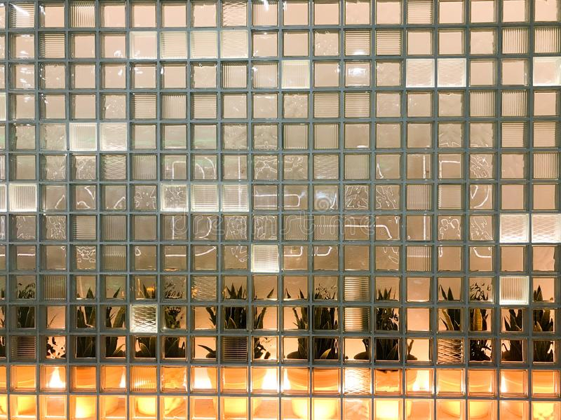Texture of a glass carved glowing transparent square square of small decorative tiles with different patterns and yellow backlight. Ing with green plants in the stock images