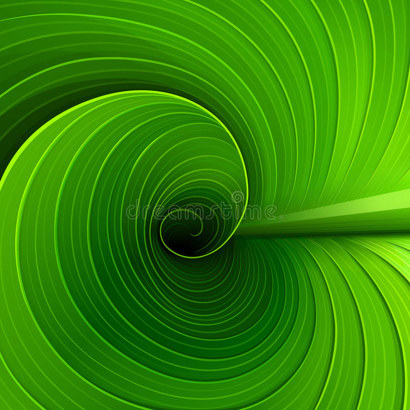 Texture of a green leaf vector illustration