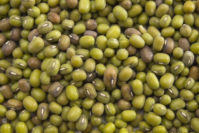 Texture of green mung beans. Green background. Macro stock photography