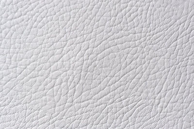 Texture gris-clair de cuir artificiel photos libres de droits