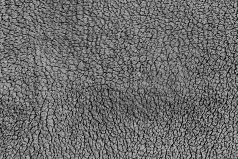 Texture grise de laine photos libres de droits