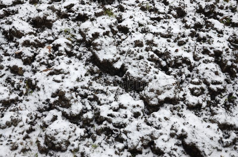 The texture of the ground, covered with a thin layer of snow. The soil of the garden in winter. The dug ground close up.  stock images