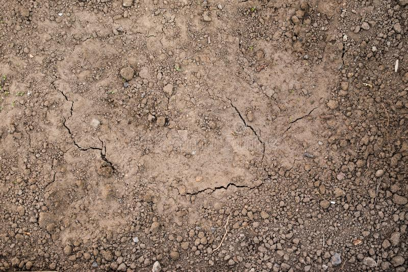 Texture of the ground ready for planting. Wet and dry land, the view from the top. From the land of growing green shoots royalty free stock photo