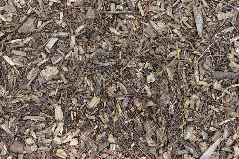 Texture Ground Woodchips Brown Background Outdoor royalty free stock photography