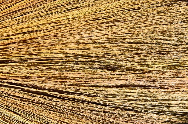 Texture grunge de contexte d'herbe sèche image stock