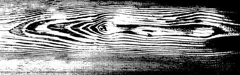 Texture grunge en bois Fond d'isolement en bois naturel Illustration de vecteur illustration stock