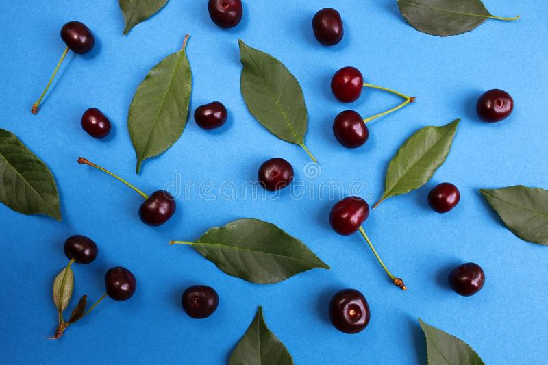 Texture image of fresh summer berries of ripe juicy cherry on a blue background. Cherry, juicy, ripe, dark, burgundy, texture, scattered, leaves, summer, season stock photo