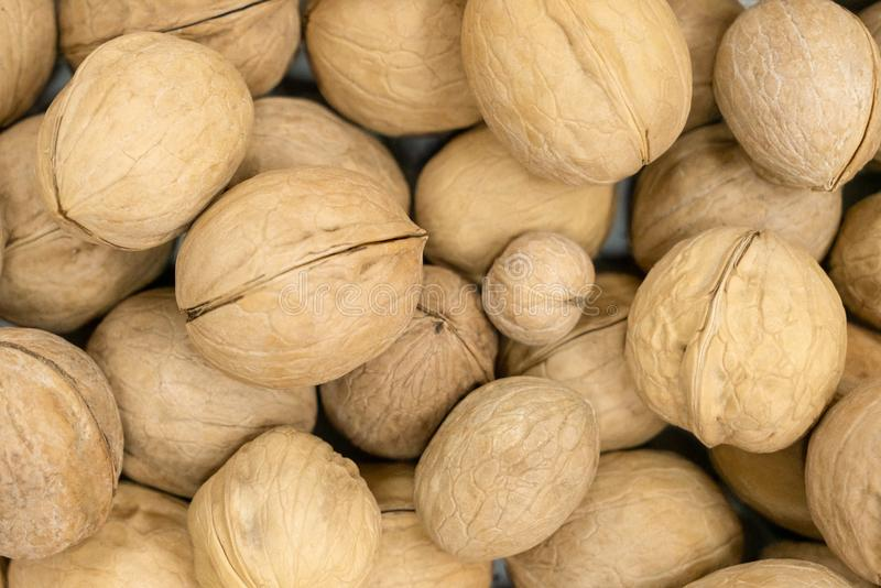 Texture of inshell walnuts close-up. Texture of ripe walnuts in a shell close-up royalty free stock photos