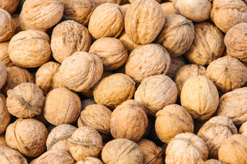 Texture of inshell walnuts. Vegetarian or vegan food. Healthy food. Background for the designer, desktop wallpaper. Natural pattern royalty free stock photography