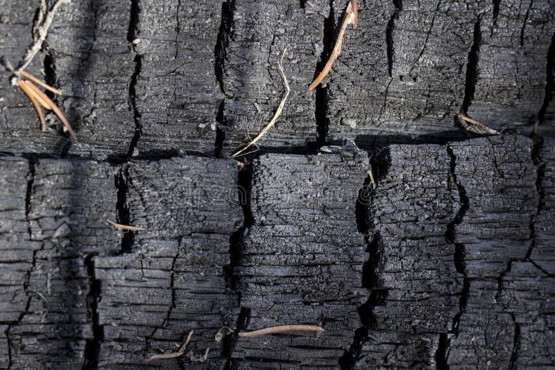 Texture intéressante de la fin roussie en bois  photos stock