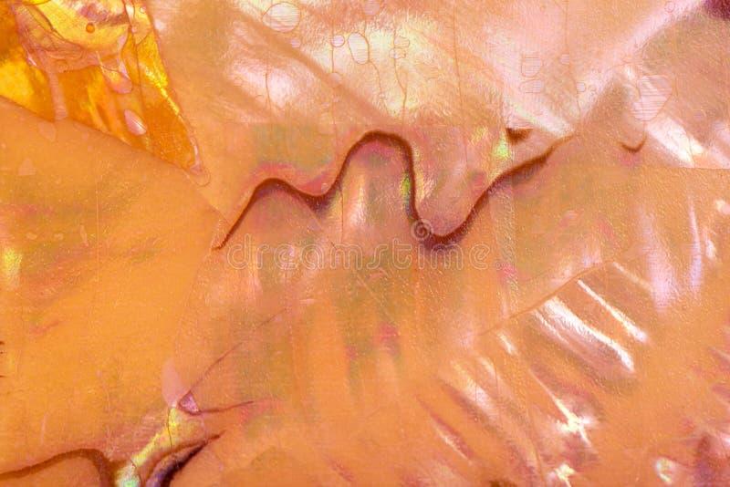 Texture jaune de fond de coquillage de nacre, fin  images stock