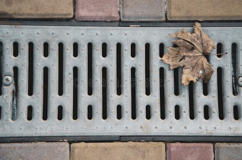 Textures in the city, park royalty free stock photography