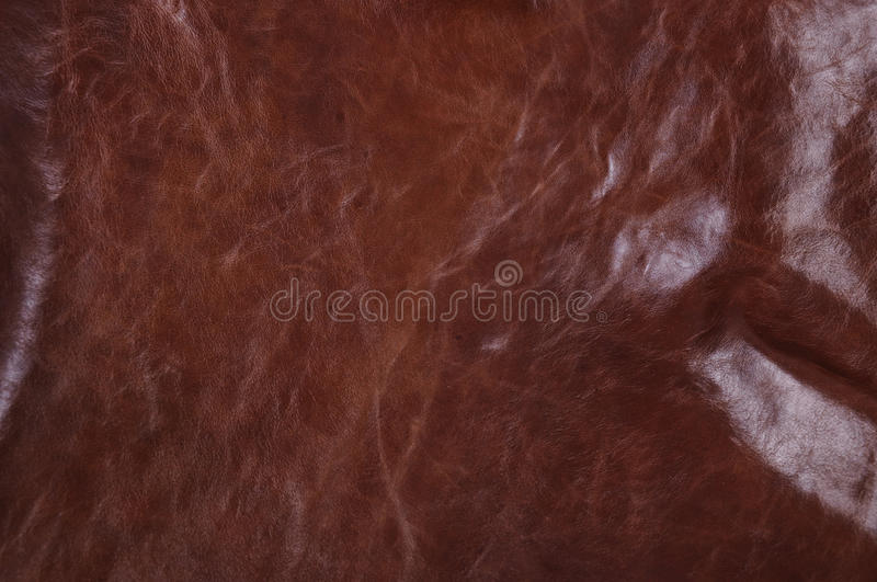 Download Texture of leather stock photo. Image of textures, abstract - 21860600