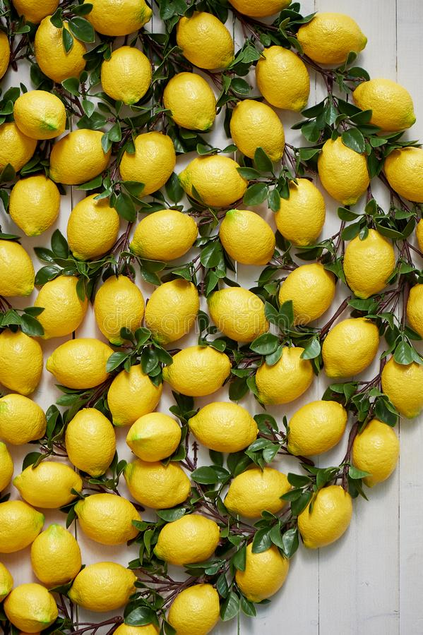 The texture of the lemons.Panels of artificial lemons on the wall. Lemons in decor. The texture of the lemons. Panels of artificial lemons on the wall. Lemons stock images