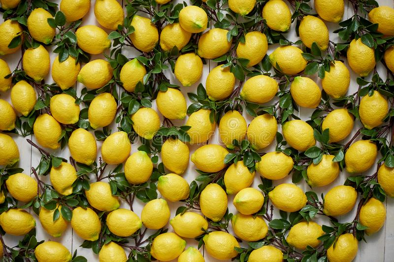 The texture of the lemons.Panels of artificial lemons on the wall. Lemons in decor. The texture of the lemons. Panels of artificial lemons on the wall. Lemons stock photo